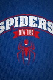 New York Spiders